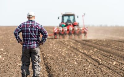 La prelazione del coltivatore diretto